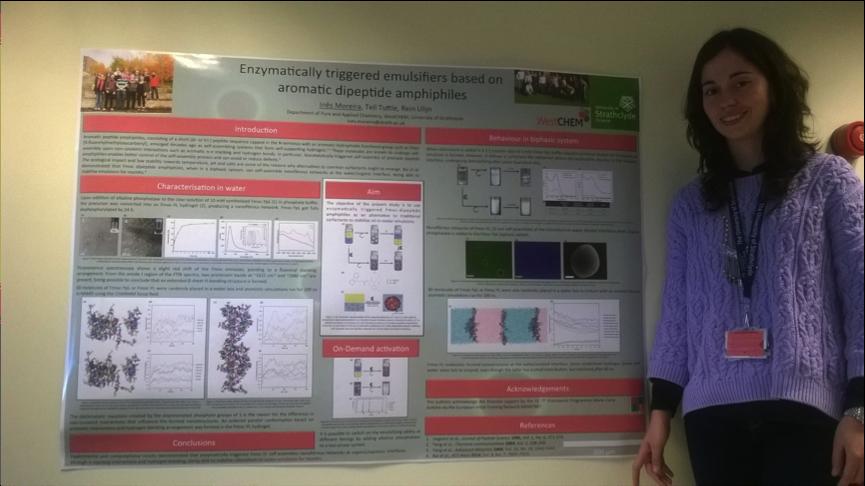 Ines presenting at Nanopep '15